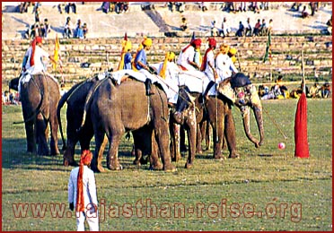 Elephant Polo in Rajasthan